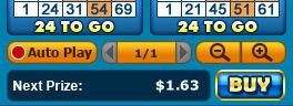 bingo liner 75 ball bingo game options